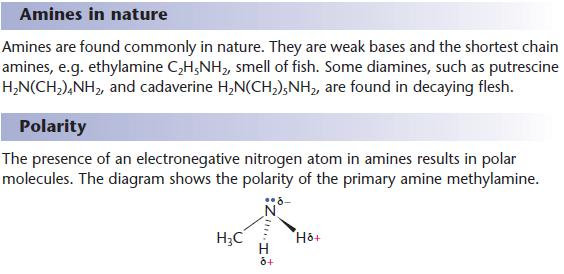Amines | a2-level-level-revision, chemistry, aromatics