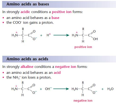Amino acids a2 level level revision chemistry aromatics amines search form altavistaventures Images