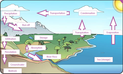 the water cycle   gcse revision  geography  weather climate  water    the water cycle