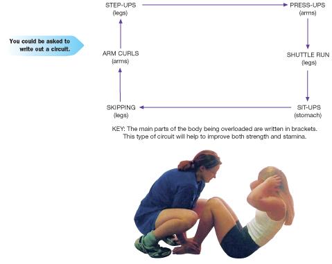 gcse pe circuit training coursework